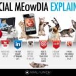 Social_Media_Explained-300